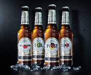 Soccer connects: Europe toasts - Warsteiner increases anticipation for the European ...