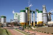 Paper Excellence Given Approval to Complete Acquisition of Leading Brazilian Pulp Producer,...