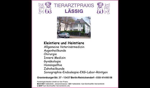 Logo von Lässig Alexandra