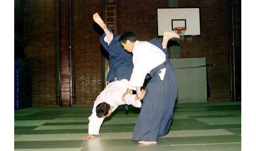 Aikido Schule