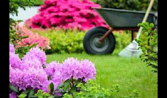 Polland Gartengestaltung GmbH