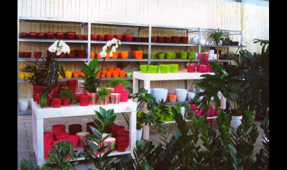 Gartencenter Schmitz gartencenter groß in grün 41564 kaarst büttgen öffnungszeiten