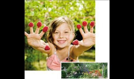 Garten-Landschaftsbau Kloß