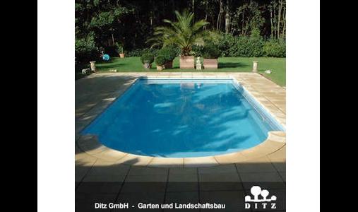 Ditz GmbH