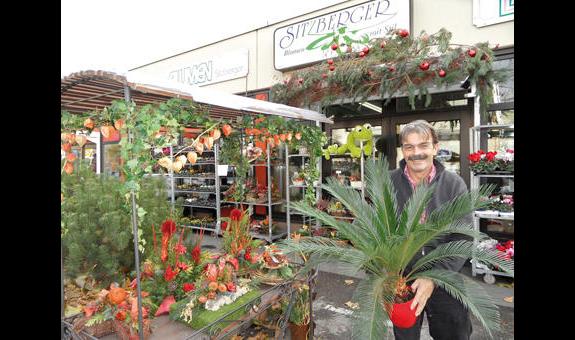 Sitzberger Blumen und Pflanzen Groß- und Einzelhandel e.K.