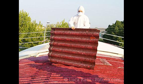 IDAS Asbest - Schadstoffreinigung GmbH