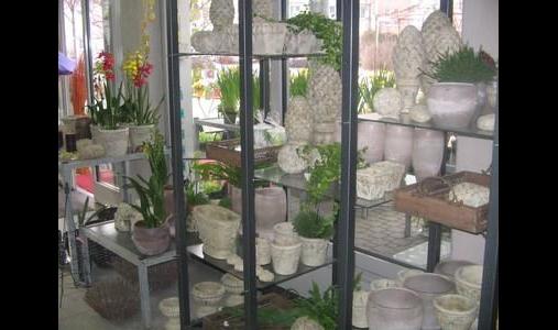 Bauer' s Blumen, Garten und mehr ... e.K.