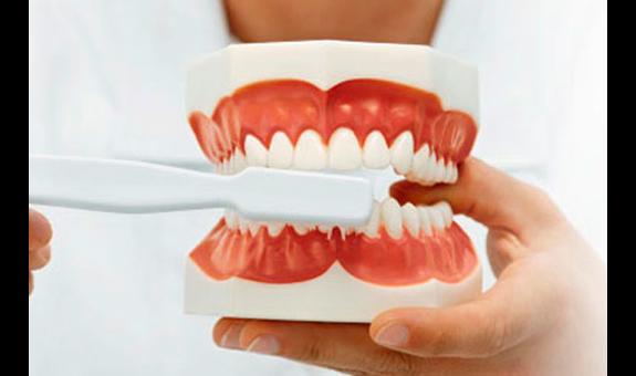 Zahnarzt mantel bastier