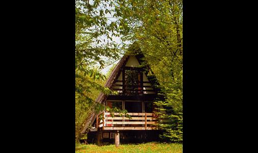 Waldcafe und Ferienhausverwaltung