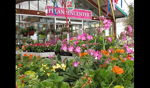 Müller Garten- & Landschaftsbau Pflanzenhandels GmbH
