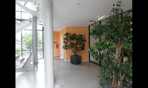 Malerbetrieb Scheede GmbH