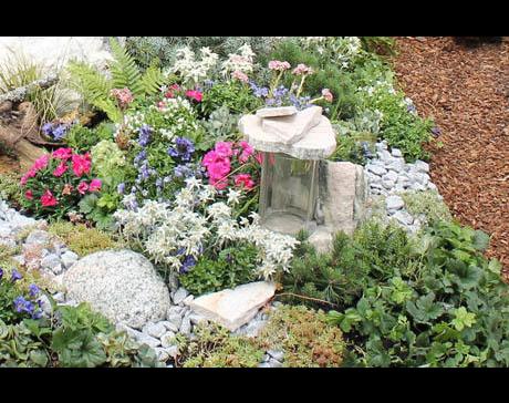 Kundenbild klein 6 Berchtenbreiter GmbH Friedhofsgärtnerei und Blumen