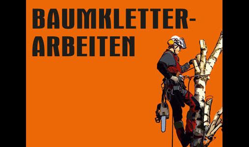 Baumkletter-Arbeiten Herbert Georgi