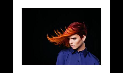 Friseur-GmbH le figaro