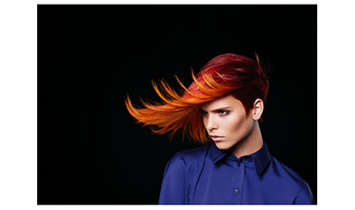 Friseur GmbH Le Figaro