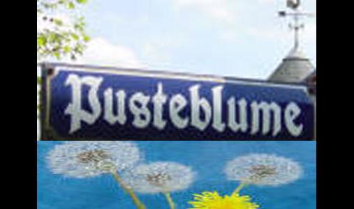 Pusteblume Köhler