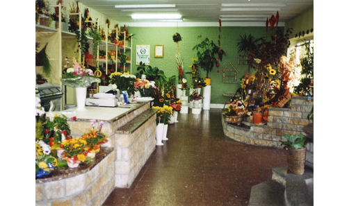 Blumenhaus Götz