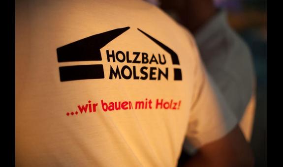 Logo von Molsen Florian, Zimmerei