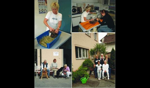 Schnepf-Vockrodt Angelika Dr., Tierarztpraxis