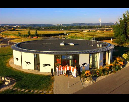 Kundenbild groß 1 Tierklinik Lautertal, Wicklein, Schäfer-Stöcklein Dres.