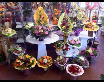 Kundenbild groß 1 Schön Brigitte Blumengeschäft
