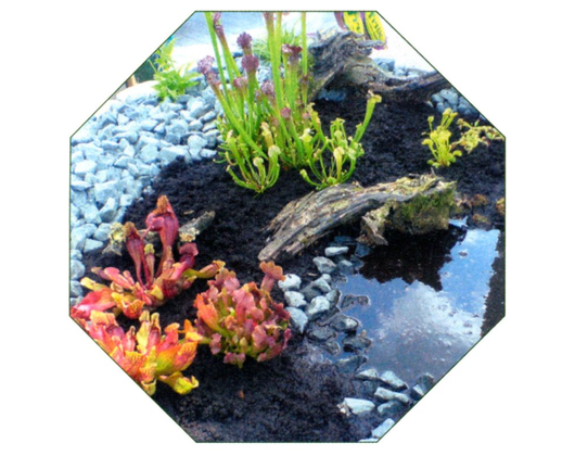 Kundenbild klein 6 Gartenbau Gartenwelt Kröner