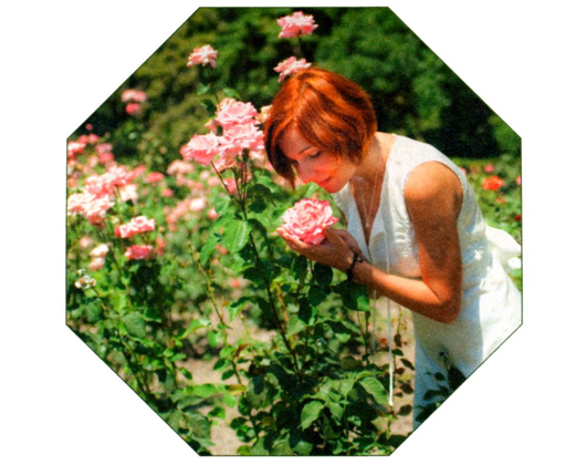 Kundenbild klein 7 Gartenbau Gartenwelt Kröner