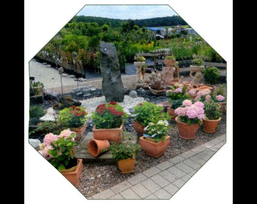 Kundenbild klein 8 Gartenbau Gartenwelt Kröner