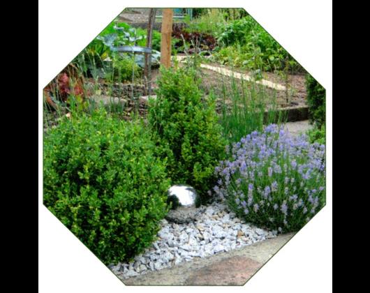 Kundenbild klein 9 Garten Kröner