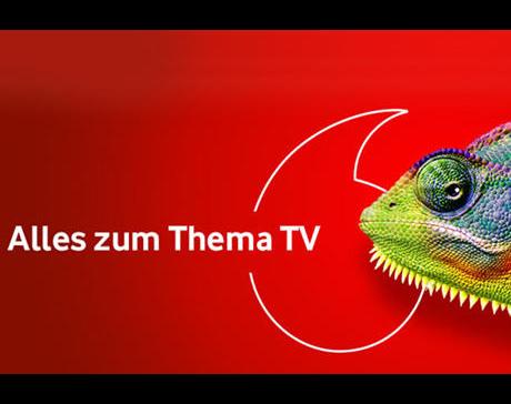 Kundenbild klein 4 Vodafone Kabel Deutschland Folker Artmann