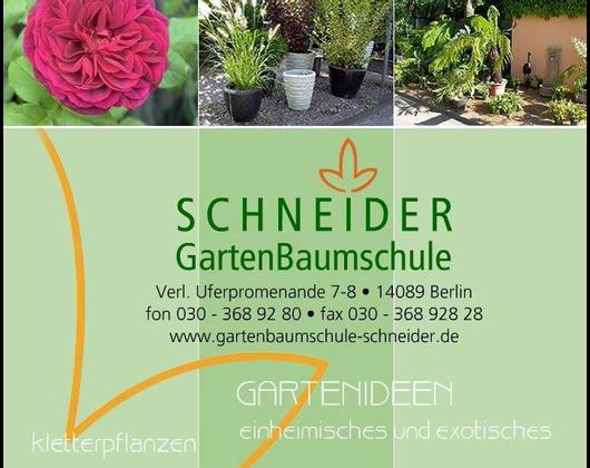 Kundenbild groß 1 Schneider Garten Baumschule