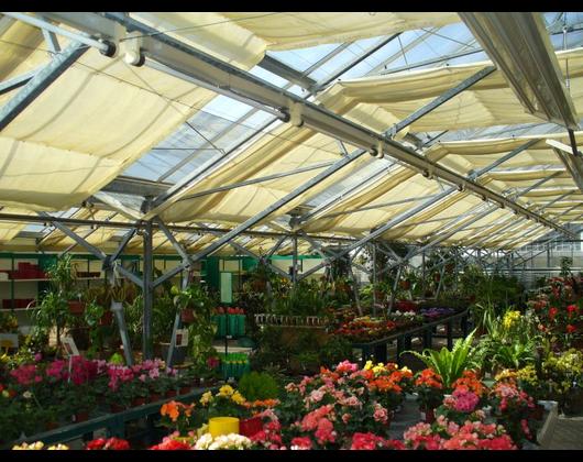 Kundenbild klein 6 Pflanzenmarkt Bohnsdorf