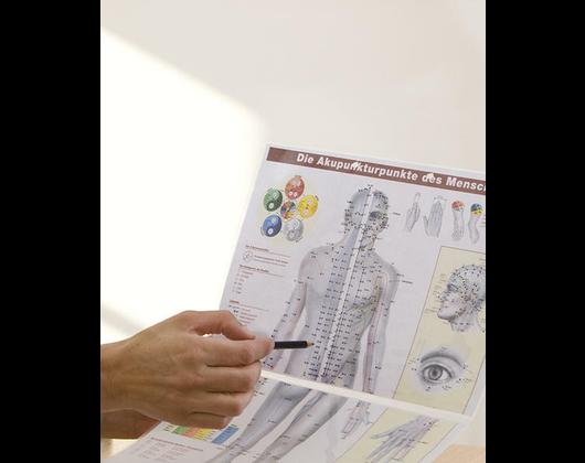 Kundenbild klein 4 Chinesische Medizin Würzburg / TCM / Akupunktur / Dr.med. Isabel Wemhöner
