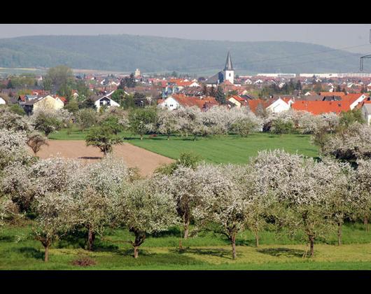Kundenbild klein 6 Verwaltungsgemeinschaft, Kleinwallstadt