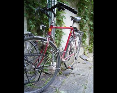 Kundenbild klein 5 Günther & Langhammer GdbR pedalkraft