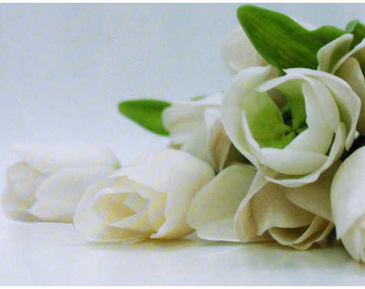Kundenbild groß 1 Blumen im Kleinreuther Weg