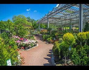 Kundenbild klein 10 Gartencenter Spiering GmbH