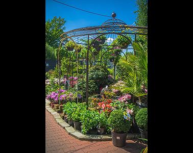 Kundenbild klein 8 Gartencenter Spiering GmbH
