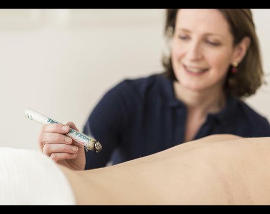Kundenbild klein 9 Chinesische Medizin Würzburg / TCM / Akupunktur / Dr.med. Isabel Wemhöner