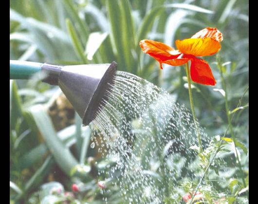 Kundenbild klein 1 Gartenbau Hörchens Harald