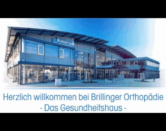Kundenbild klein 1 Brillinger GmbH + Co. KG
