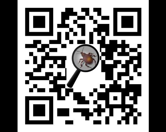 Kundenbild klein 6 Brodt WHD Schädlingsbekämpfung