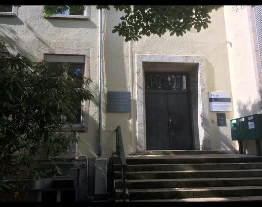 Tropeninstitut Tübingen öffnungszeiten