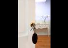 immobilien folger gmbh in w rzburg altstadt im das telefonbuch finden tel 0931 4 04 3. Black Bedroom Furniture Sets. Home Design Ideas
