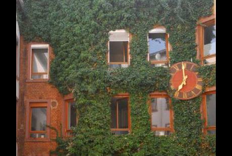 adaptionseinrichtung haus am schneeberg in aschaffenburg innenstadt im das telefonbuch finden. Black Bedroom Furniture Sets. Home Design Ideas