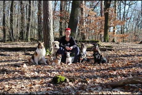Kundenbild klein 6 4 Your Dog | Hundeausführservice | Gassiservice